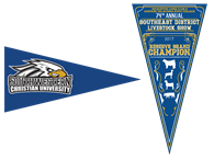 Picture for category Pennants