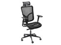 Picture of Danube Mesh Executive Task Chair