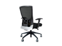 Picture of Eclipse Chair